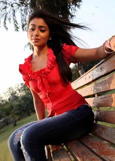 Shriya Saran photo