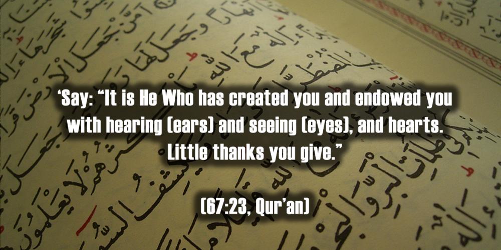 Diari Seorang Muslim