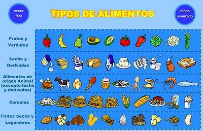 funcion de los alimentos en el organismo: