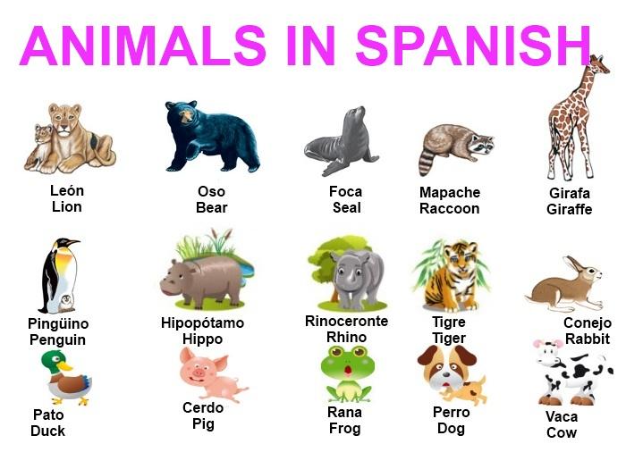 animals in spanish - Khafre
