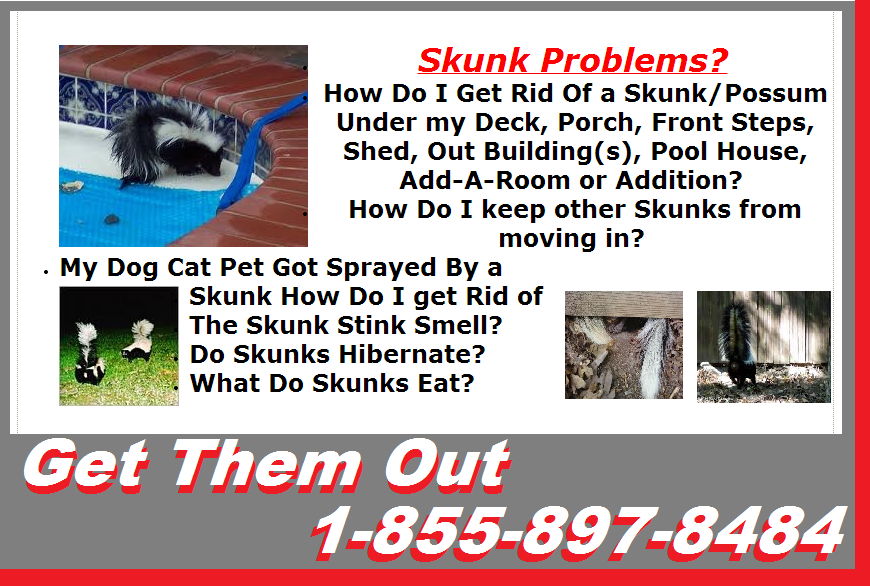 SIMCOE AAA 1 WILDLIFE REMOVAL ANIMAL PEST CONTROL SERVICES