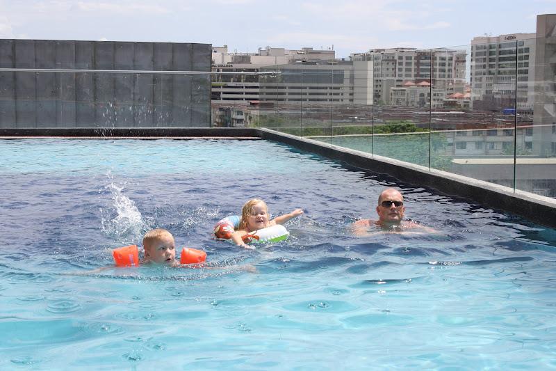 svømmende aper på borneo