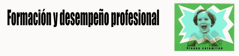 Formación y Desempeño profesional