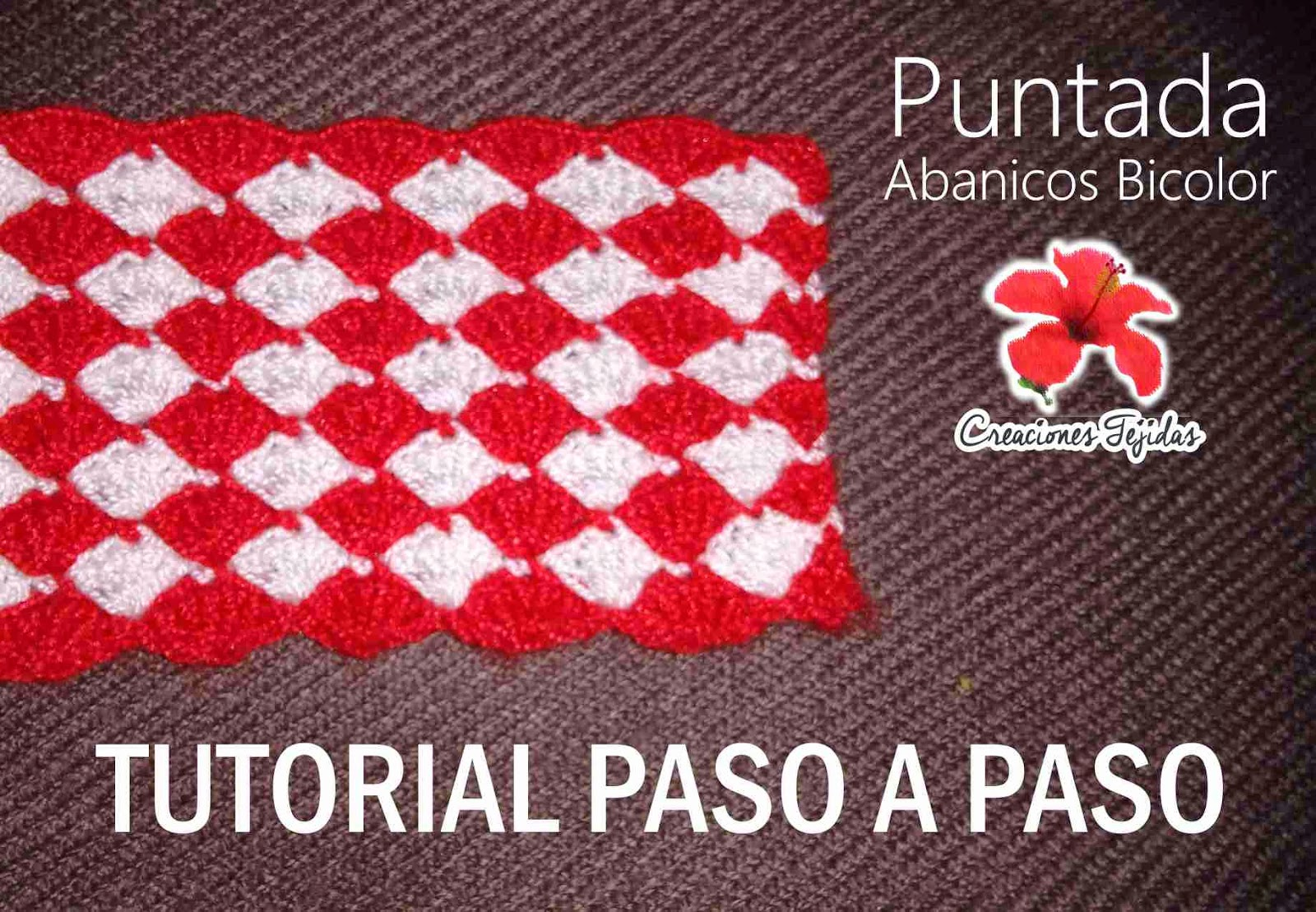 #T1 Puntada Abanicos Bicolor - Tutorial Paso a Paso + Video