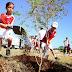 Sesenta párvulos adoptan un árbol en Temozón Norte