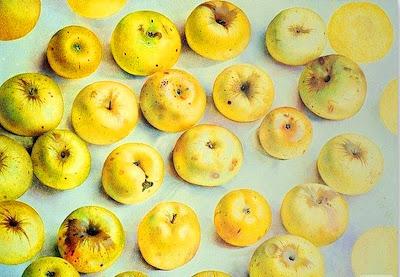 cuadros-bodegones-modernos-con-frutas