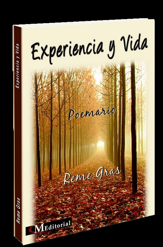 Experiencia y vida