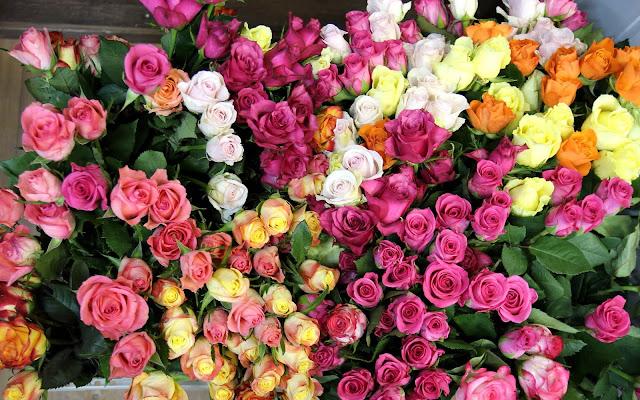 Bureaublad achtergrond met verschillende kleuren rozen