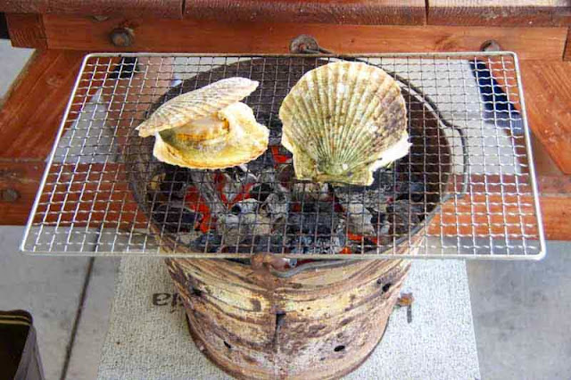barbecue, clamshells