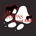Zarpas  Amistad Animal