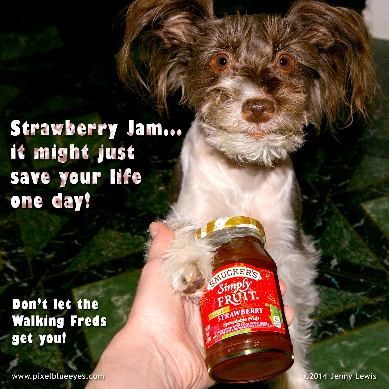 Pixel stocks up and says that strawberry jam might just save your life one day