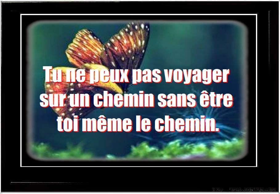 Proverbe et citation sagesse