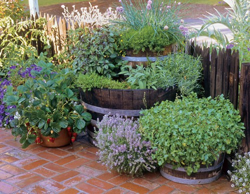 Inspire bohemia unique garden planters and displays for Container herb garden