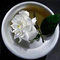 http://3.bp.blogspot.com/-a7hNpHyzWOE/UjCq3DzswiI/AAAAAAAACYM/mku7dh2LK8Y/s1600/Day+302+-+Gardenia+Tea.png