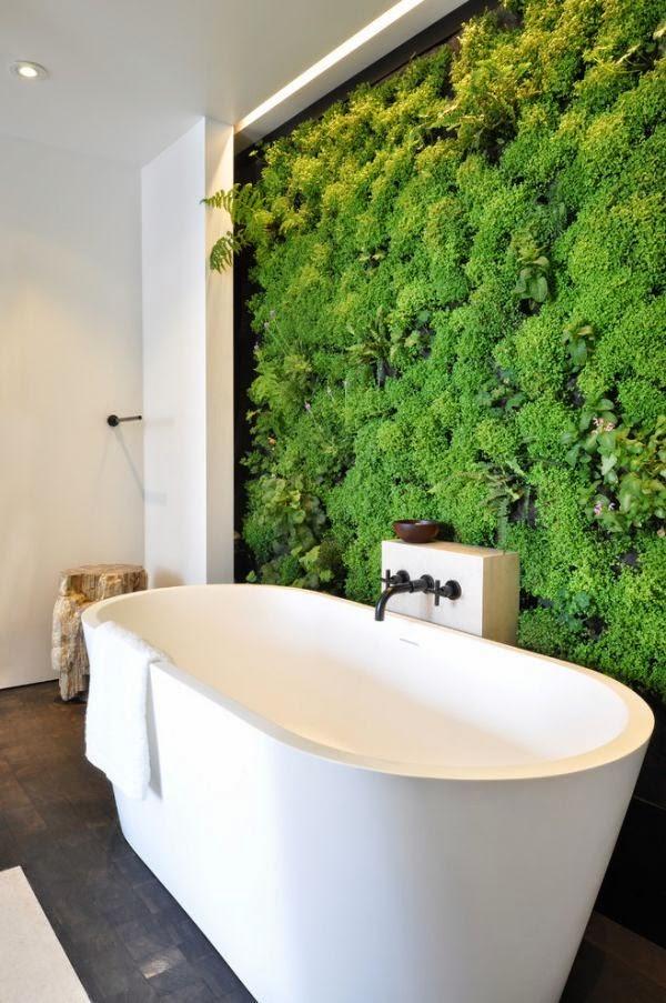 Interior Relooking: Come arredare con le piante