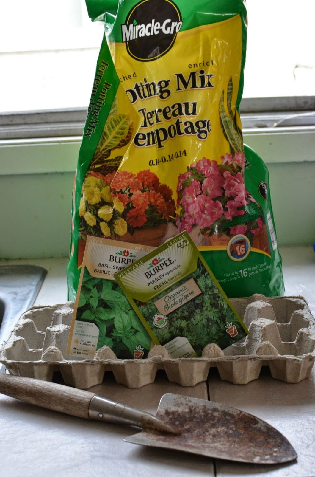 Mindful musings create your own egg carton greenhouse for Design your own egg boxes