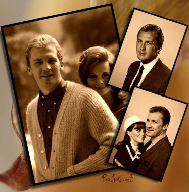 roy thinnes y lynn loring