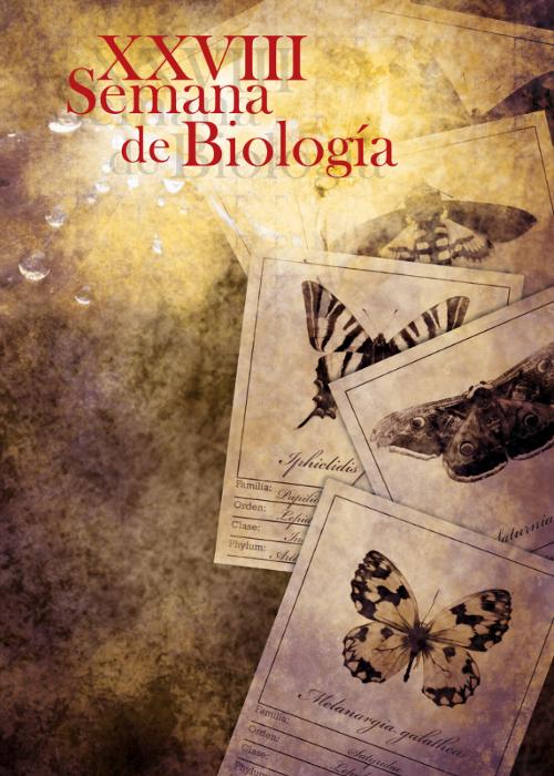 Cartel ganador. Autora: Marta María Tébar Ruiz.