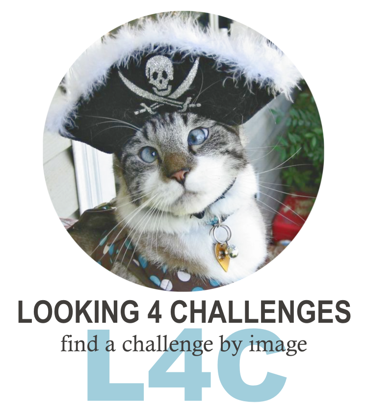 Looking for Challenges