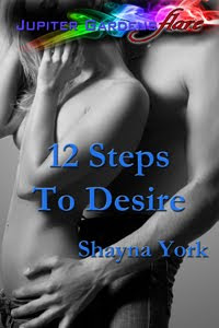 12 Steps to Desire - Cover Art