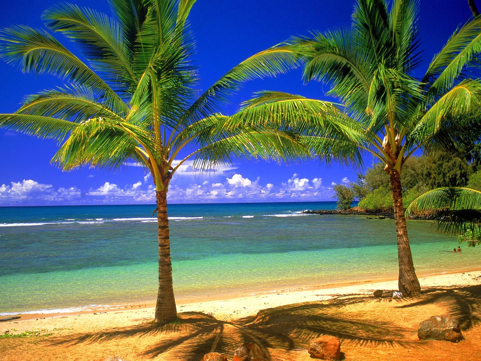 Tropical Beaches Beautiful nature Images And Wallpapers