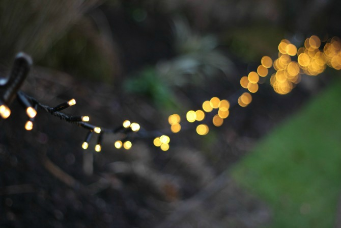 Bokeh at Tredegar House