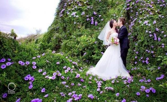 Địa điểm chụp ảnh cưới đẹp ở Đà Lạt ~ Thiên đường mộng mơ1