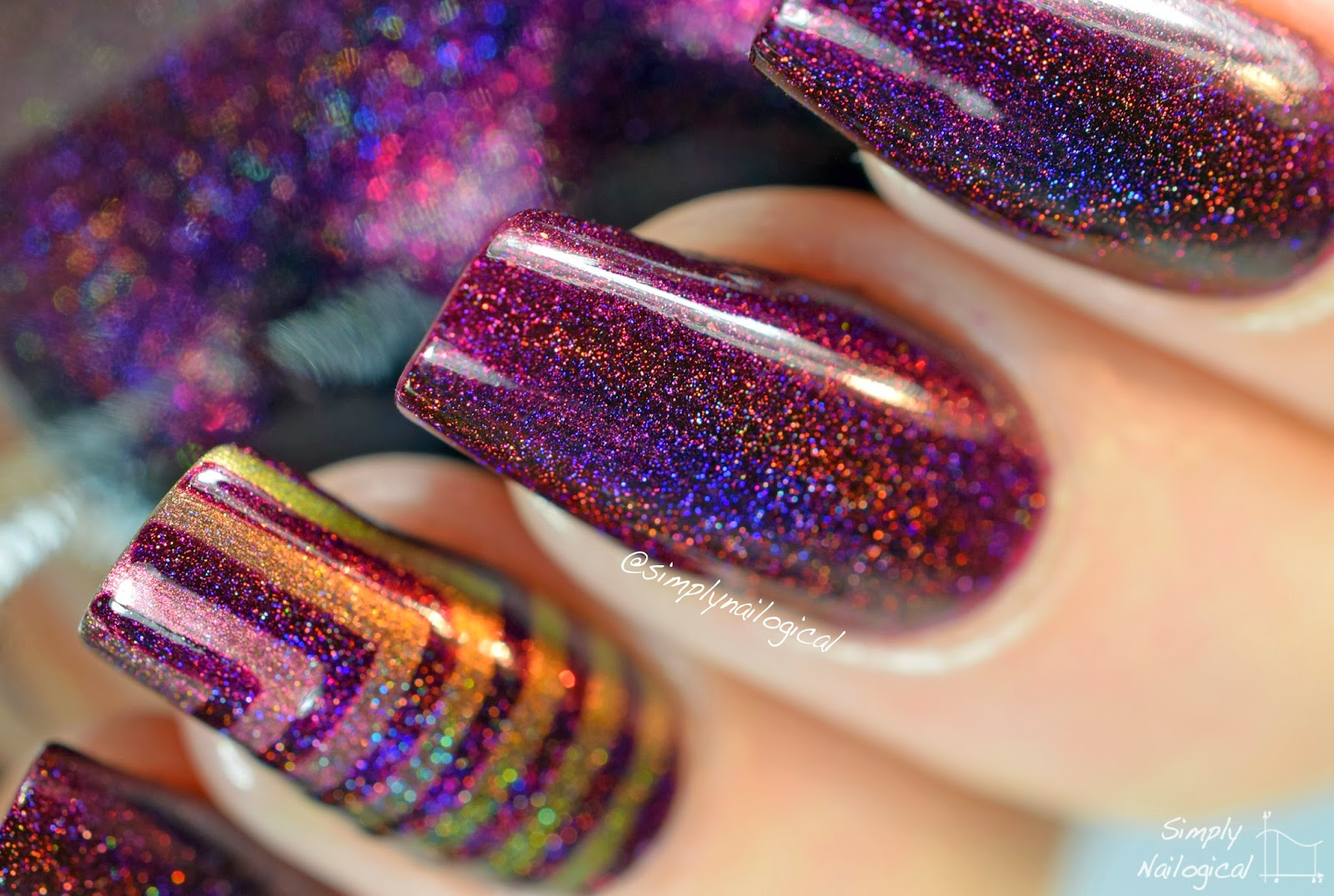 Black Orchid - ILNP Fall 2014 collection