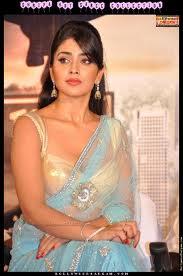 Sreya saran hot in saree; Tamil hot actress 4