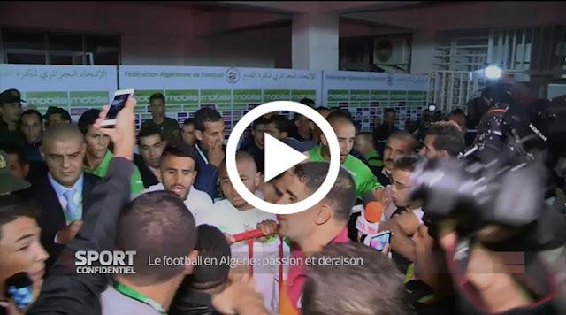 VIDÉO. Reportage Le football en Algérie, passion et déraison