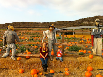 Pumpkin Patch at Tanaka Farms, Irvine California www.thebrighterwriter.blogspot.com