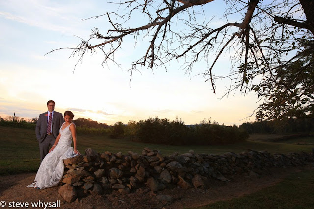 868 estates vineyard bride and groom panoramic photo