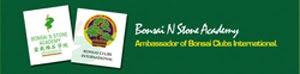 Click here to enter I.S.Ng stone bonsai website