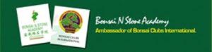 Click here to enter I.S.Ng stone bonsai website
