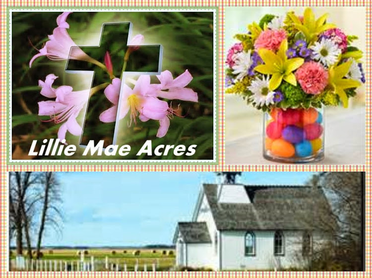 Lillie Mae Acres