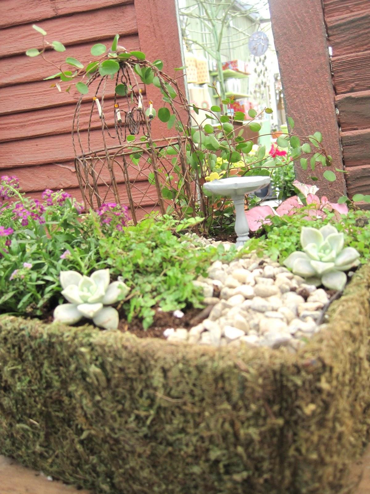 Everlasting Blooms: Make your own Fairy Garden!