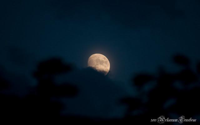 der Mond vor Wolken