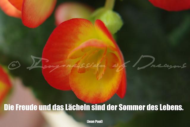 Die Freude und das Lächeln sind der Sommer des Lebens.