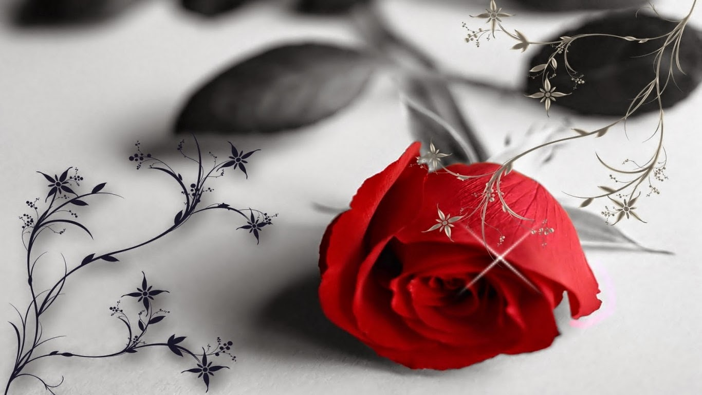 3d Flower Red Rose Propose HD Picture 1366 x 768