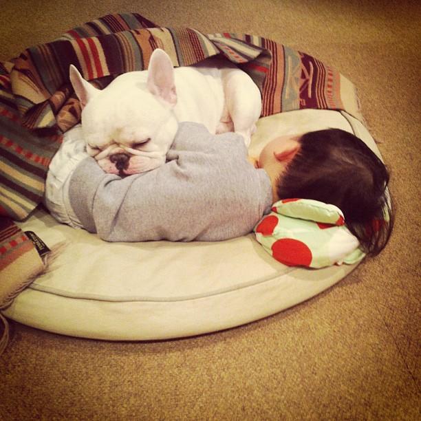 Japanese Boy and His Bulldog