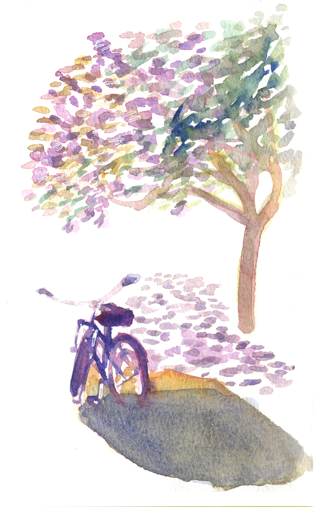 "Shiho Nakaza ""Santa Monica"" watercolor sketching bicycle tree jacaranda"