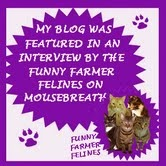 Featured on Mousebreath