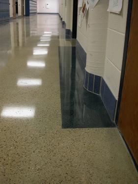rhino pro flooring: stripping and waxing terrazzo floors vs