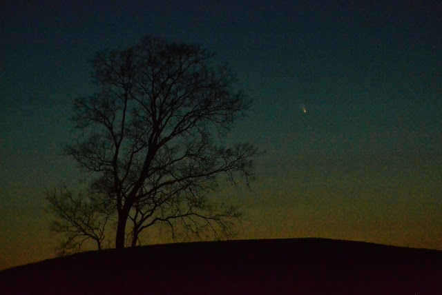 First glimpses of Comet Pan-STARRS
