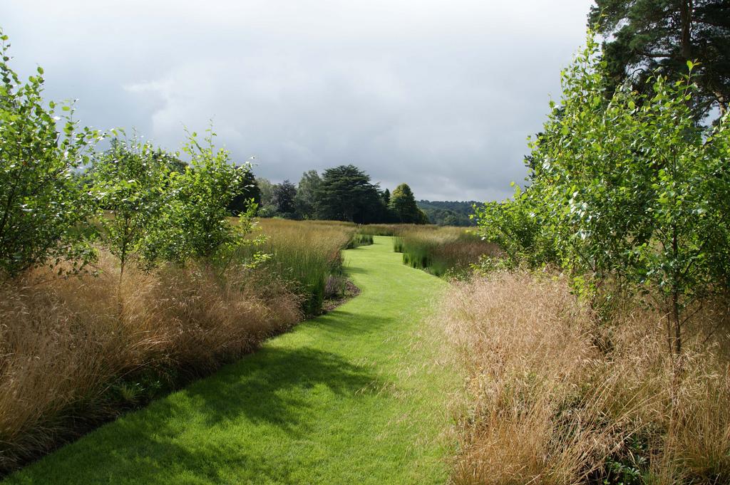 Zielona metamorfoza architektura krajobrazu ogrody for Piet oudolf pflanzplan