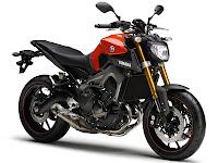 2014 Yamaha MT-09 Gambar Motor - 4