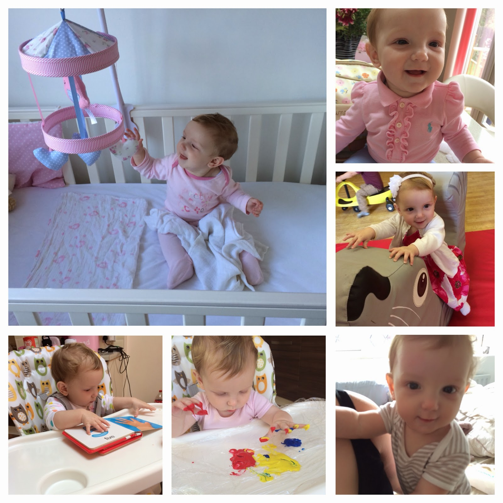 Scarlett | 7 Month Update