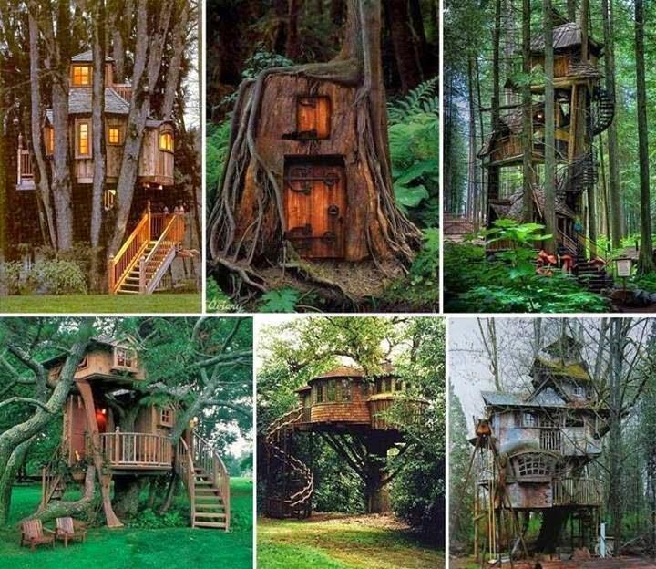 6 casas en el árbol increíbles