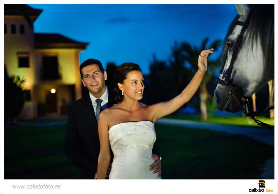 boda-ayuntamiento-de-alicante-yeguada-Lagloria-18-fotógrafo-Calixto-Foto