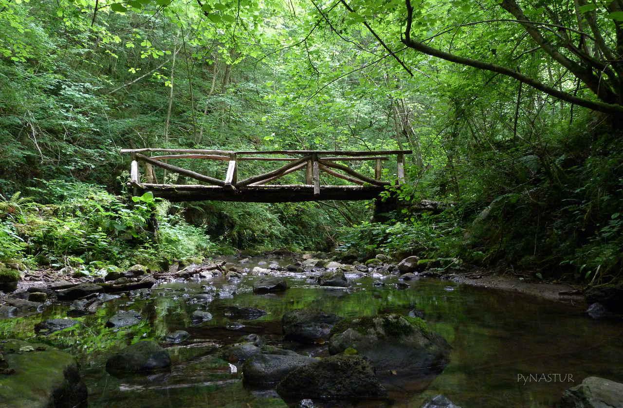 Puente sobre el Río de Las Xanas o Viescas